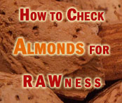 testing almonds for RAWness